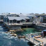 Monterey Bay Aquarium - Backview